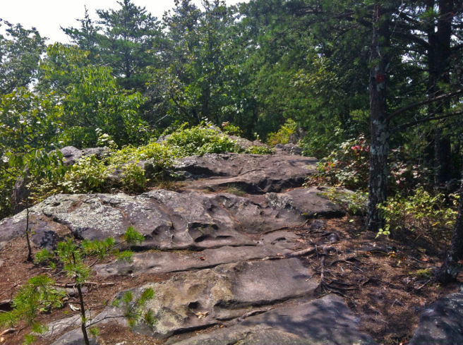 Hiking the Rock Top Trail. Not for the faint of heart! Crowder's Mountain State Park